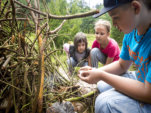 Bushcraft survival kinderfeest