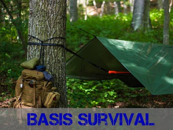 Survival cursus